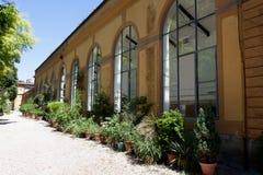 Jardim botânico, Florença, Firenze, Itália, Italia Foto de Stock