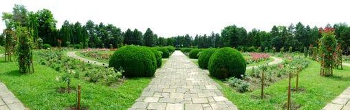 Jardim botânico Iasi Romênia Foto de Stock Royalty Free