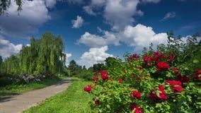 Jardim botânico 4K filme