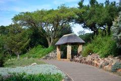 Jardim botânico nacional de Kirstenbosch Fotos de Stock Royalty Free