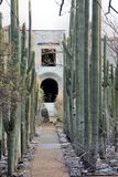 Jardim botânico Oaxaca México fotos de stock