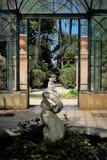 Jardim botânico, Palermo, Sicília Fotografia de Stock