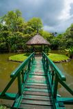 Jardim botânico Pamplemousses, Maurícias fotografia de stock
