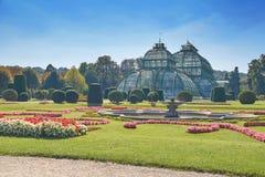 Jardim botânico perto do palácio de Schonbrunn em Viena Fotografia de Stock