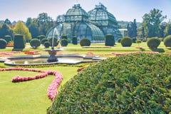 Jardim botânico perto do palácio de Schonbrunn em Viena Imagem de Stock