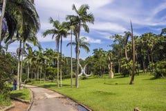 Jardim botânico, Sao Paulo, Brasil Fotos de Stock
