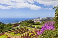 Jardim botânico tropical em Funchal, ilha de Madeira, Portugal Imagens de Stock Royalty Free