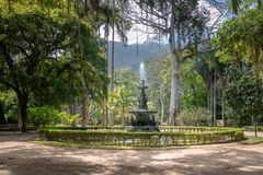 Jardim Botanico Botanical Garden - Rio de Janeiro, Brazil royalty free stock images