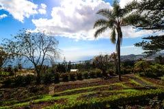 Jardim Botanico da Madeira Stock Photography