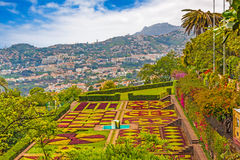 Jardim Botanico, Funchal Obraz Royalty Free