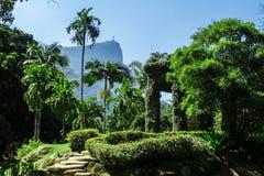Jardim Botanico, Rio de Janeiro fotografía de archivo