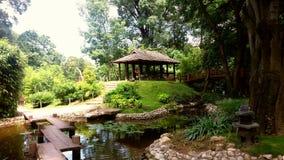 Jardim botânico Foto de Stock Royalty Free