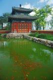 Jardim chinês Fotos de Stock Royalty Free