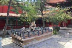 Jardim chinês Foto de Stock