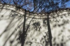 Jardim chinês, Sydney Australia Imagem de Stock Royalty Free