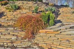 Jardim colorido do jardim ornamental do outono no dia ensolarado brilhante imagens de stock royalty free