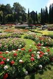 Jardim colorido em Mae Fah Luang, Chiang Rai, Tailândia Imagem de Stock
