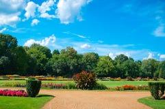 Jardim com flores Imagem de Stock