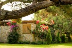 Jardim com flores bonitas Imagens de Stock Royalty Free