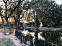 Jardim com lago fotografia de stock