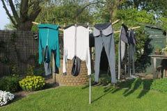 Jardim com lavanderia e flores Fotos de Stock