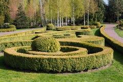 Jardim com paisagem do topiary Ajardinar no parque Fotografia de Stock