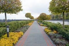 Jardim com paisagem do topiary Ajardinar no parque Fotos de Stock