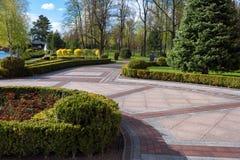 Jardim com paisagem do topiary Ajardinar no parque Imagens de Stock Royalty Free