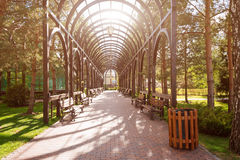 Jardim com paisagem e arco do topiary Ajardinar no parque Imagens de Stock