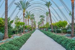 Jardim com palmeiras dentro de uma rede dos ferros que simulam folhas de palmeira fotografia de stock