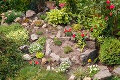 Jardim com plantas e as pedras frescas Foto de Stock
