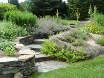 Jardim com trajeto do enrolamento Fotos de Stock Royalty Free