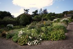 Jardim completamente das flores Fotografia de Stock