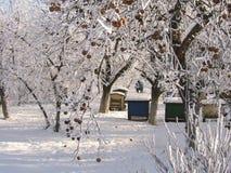 Jardim congelado fotos de stock