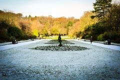 Jardim congelado Fotografia de Stock