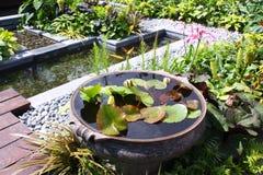 Jardim da água Foto de Stock