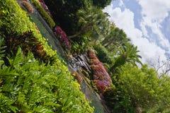 Jardim da água de Florida Foto de Stock