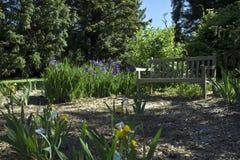 Jardim da íris fotografia de stock