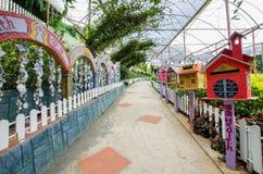 Jardim da alfazema em Cameron Highlands imagens de stock royalty free