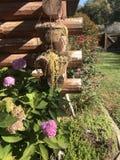 Jardim da cabana rústica de madeira Foto de Stock Royalty Free