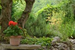 Jardim da casa de campo Imagens de Stock Royalty Free