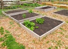 Jardim da comunidade Foto de Stock Royalty Free