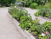 Jardim da comunidade Fotografia de Stock Royalty Free