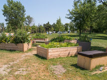 Jardim da comunidade Imagens de Stock Royalty Free