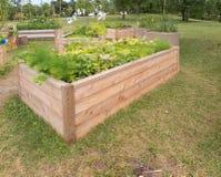 Jardim da comunidade Fotos de Stock Royalty Free