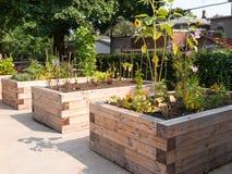Jardim da comunidade Imagem de Stock Royalty Free
