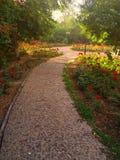 Jardim da comunidade Fotos de Stock