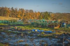 Jardim da comunidade de Edimburgo do jardim do eco do jardim da comunidade bio fotografia de stock royalty free