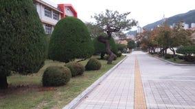 Jardim da escola Fotografia de Stock