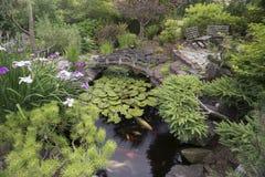 Jardim da lagoa de Koi Fotos de Stock